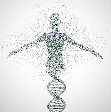 human genome for WDowdy